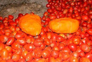 بیش از ۳۳ کیلوگرم مواد مخدر از بار گوجه فرنگی در ارومیه کشف شد
