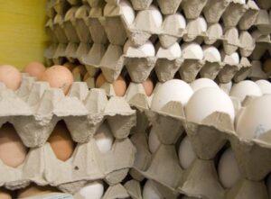 اجرای ممنوعیت عرضه تخم مرغ فله ای در مقطع فعلی اجباری نیست