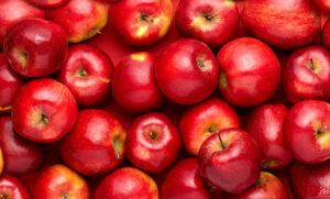 قیمت سیب درختی در یک سال اخیر چه میزان تغییرات داشته است؟