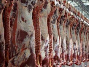 تولید سالانه ۴۷ هزار تن گوشت قرمز در آذربایجان غربی