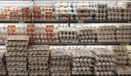 تخممرغ نگهداری شده در یخچال را خریداری کنید