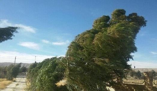 وزش باد شدید امروز در آذربایجان غربی ادامه دارد