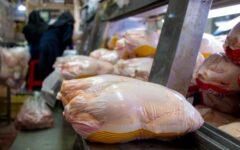 مشکلی در تامین مرغ بازار شب عید نخواهد بود